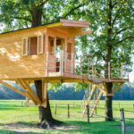 31 Awesome Treehouse Ideas That You Can Build In A Weekend