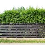 Horizontal Fences: 10 Stylish ideas!